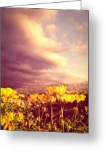 Tiny Flowers Greeting Card by Bob Orsillo