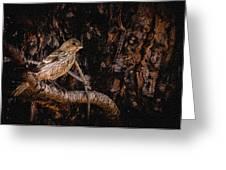 Tiny Sparrow Huge Tree Greeting Card by Bob and Nadine Johnston