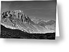 Titus Canyon Peak Greeting Card by Peter Tellone