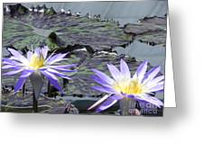 Together Is Beauty Greeting Card by Chrisann Ellis