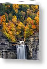 Top Of The Falls Greeting Card by Mark Papke