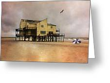Topsail's Past II Greeting Card by Betsy C  Knapp