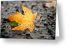 Touch Of Green Greeting Card by Irina Wardas