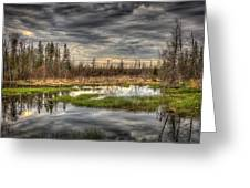 Touch Of Nature Greeting Card by Gary Smith
