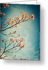 Touch The Sky Greeting Card by Colleen Kammerer