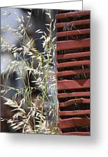 Tractor Grille And Grasses Greeting Card by Jillian Ryder