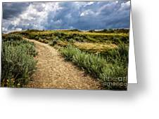 Trail In Badlands In Alberta Canada Greeting Card by Elena Elisseeva