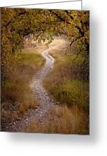 Trail Of Dreams Greeting Card by Michael Van Beber