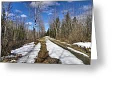Trail Thaw Greeting Card by Gene Cyr