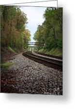 Train Tracks Greeting Card by Suzi Nelson