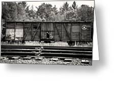 Trains Greeting Card by David Fox Photographer