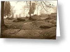 Tree And Steps At Devils Den - Gettysburg Greeting Card by Jan W Faul