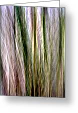 Tree Boughs Abstract II Greeting Card by Natalie Kinnear