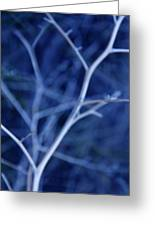 Tree Branches Abstract Blue Greeting Card by Jennie Marie Schell