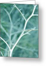 Tree Branches Abstract Turquoise Greeting Card by Jennie Marie Schell
