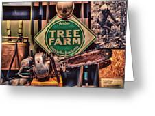 Tree Farm Greeting Card by Todd and candice Dailey