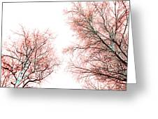 Tree Greeting Card by Nina Peterka