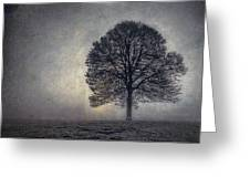 Tree of Life Greeting Card by Scott Norris