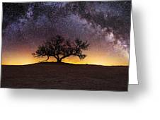 Tree Of Wisdom Greeting Card by Aaron J Groen