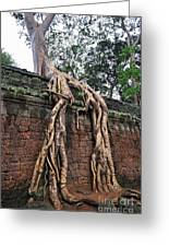 Tree Roots On Ruins At Angkor Wat Greeting Card by Sami Sarkis