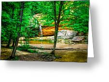 Tree roots Greeting Card by Optical Playground By MP Ray