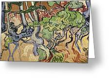 Tree Roots Greeting Card by Vincent Van Gogh