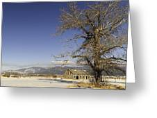 Tree With Barn Greeting Card by Sue Smith