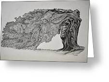 Tree With Faces Greeting Card by Glenn Calloway