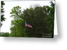 Trees And Flag Greeting Card by Joseph Baril