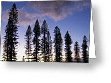 Trees In Silhouette Greeting Card by Adam Romanowicz