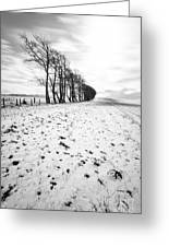Trees In Snow Scotland II Greeting Card by John Farnan