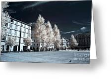 Trees In The City Greeting Card by John Rizzuto