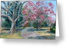 Trees Of Windermere Greeting Card by Susan E Jones