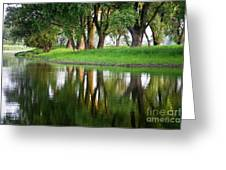 Trees Reflection On The Lake Greeting Card by Heiko Koehrer-Wagner