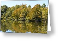 Trees Starting To Have Color Greeting Card by Ruth  Housley