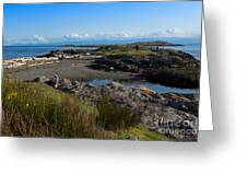 Trial Island And The Strait Of Juan De Fuca II Greeting Card by Louise Heusinkveld