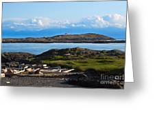 Trial Island And The Strait Of Juan De Fuca Greeting Card by Louise Heusinkveld