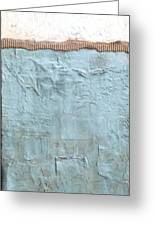 Tribute To Texture Greeting Card by Susan McCarrell