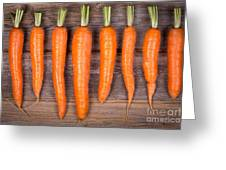 Trimmed Carrots In A Row Greeting Card by Jane Rix