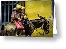 Trinidad In Color Part IIi - Donkeyboy Greeting Card by Erik Brede