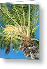 Tropical Bloom Greeting Card by Danielle  Perry