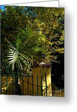 Tropical Invitation Greeting Card by Susanne Van Hulst