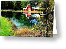 Tucked Away Greeting Card by Tina M Wenger