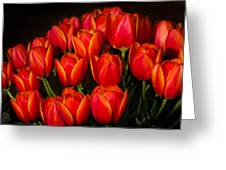 Tulip Bouquet Greeting Card by Brian Xavier
