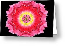 Tulip Peach Blossom I Flower Mandala Greeting Card by David J Bookbinder