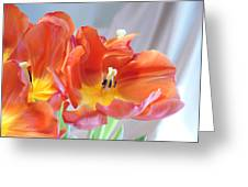Tulip Profusion Greeting Card by Margie Avellino