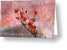 Tulip Tree Budding Greeting Card by J Larry Walker