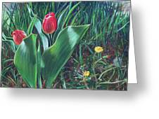 Tulips And Dandelions Greeting Card by Nick Payne