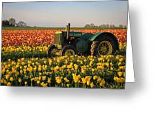 Tulips And Tractors Greeting Card by Steve McKinzie