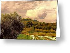 Tulips Field And Lurs Village In Provence France Greeting Card by Flow Fitzgerald
